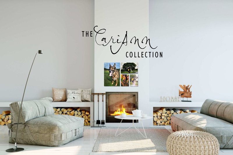 CariAnn-Collection